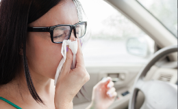 Allergie primaverili: l'auto è un covo di polveri.