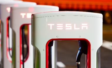 Tesla Robot sito